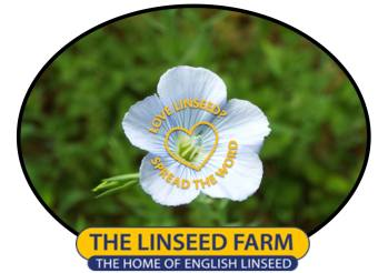 linseed, flax, flower,