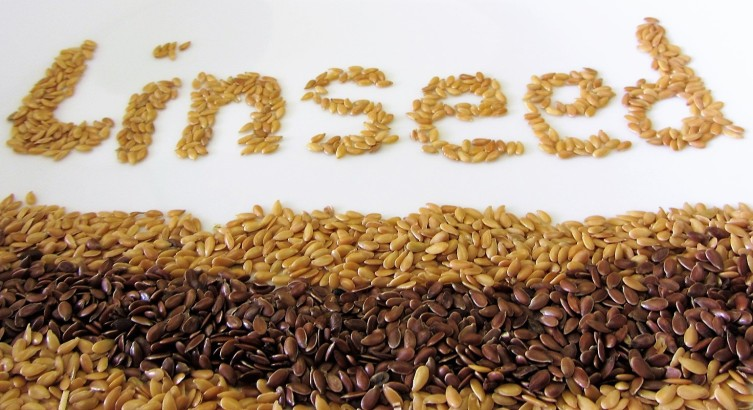 linseed flax seed flaxseed oil meal ground oil health benefits cholesterol