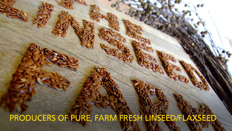 Producers of pure, farm fresh linseed/flaxseed