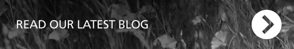 Read our latest blog
